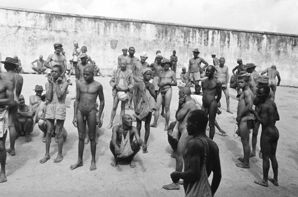 """Brazilian Holocaust"" in Colona"